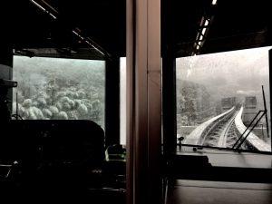 多摩都市モノレールからの雪景色